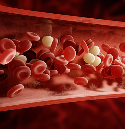 Red Cells - Tissue Regeneration